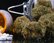 Adults Who Mix Cannabis with Opioids for Pain Report Higher Anxiety, Depression
